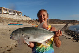 Jack Crevalle from the beach Magdalena Bay